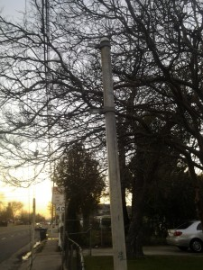 65th and Broadway bus stop sign missing