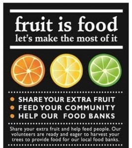 March 29th Community Citrus Harvest to be Hosted by Soil Born Farms