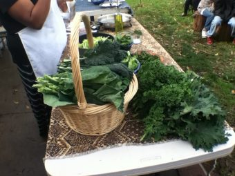 VIDEO: South Oak Park Joins Together To Create A Community Garden Party