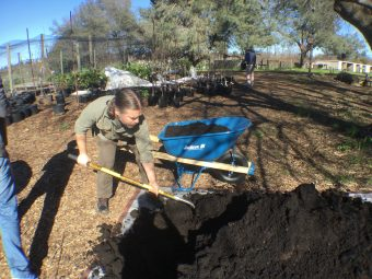 VIDEO: Volunteers Gather to Help Sacramento Greener