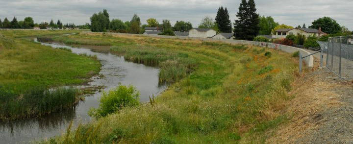 Morrison Creek planned to be revitalized