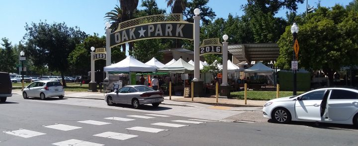 A Saturday Morning At The Oak Park Farmers' Market