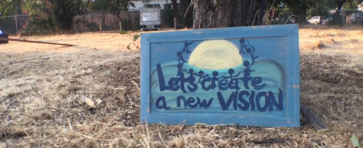 VIDEO: Art Garden Thrives On Oak Park Corner